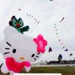 The Cape Town International Kite Festival 2019