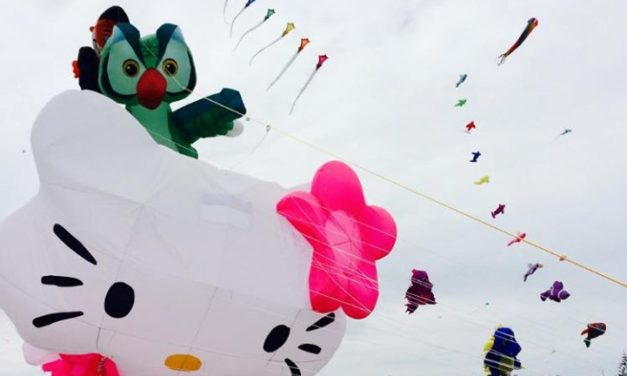 The Cape Town International Kite Festival 2019
