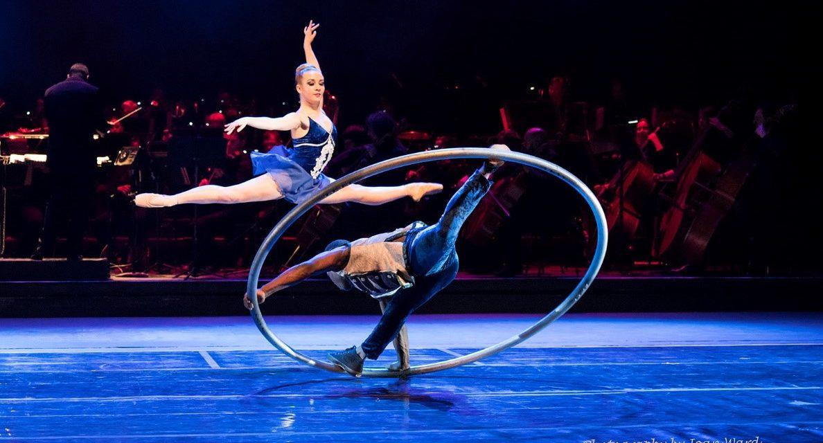 Review: Zip Zap circus at vNAF
