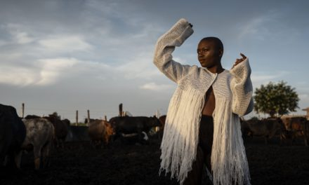 Music festival: Blooming Sounds from Joburg, 2020