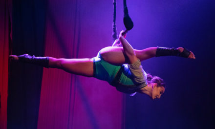 Theatrical circus: Zip Zap, A Circus Picnic, 2020